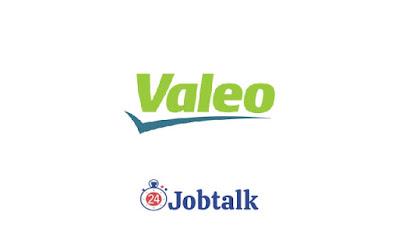 Valeo Egypt Summer Internship