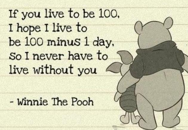 Winnie The Pooh Live Without You Quotes