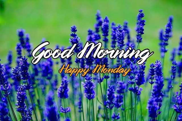good morning monday