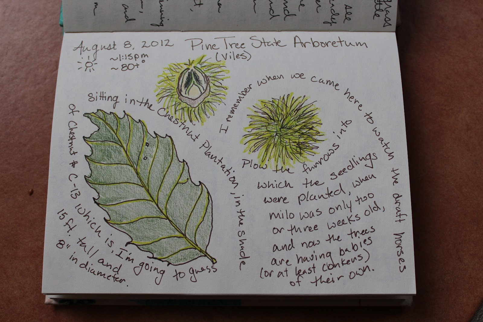 journal nature journaling entry project ve remains