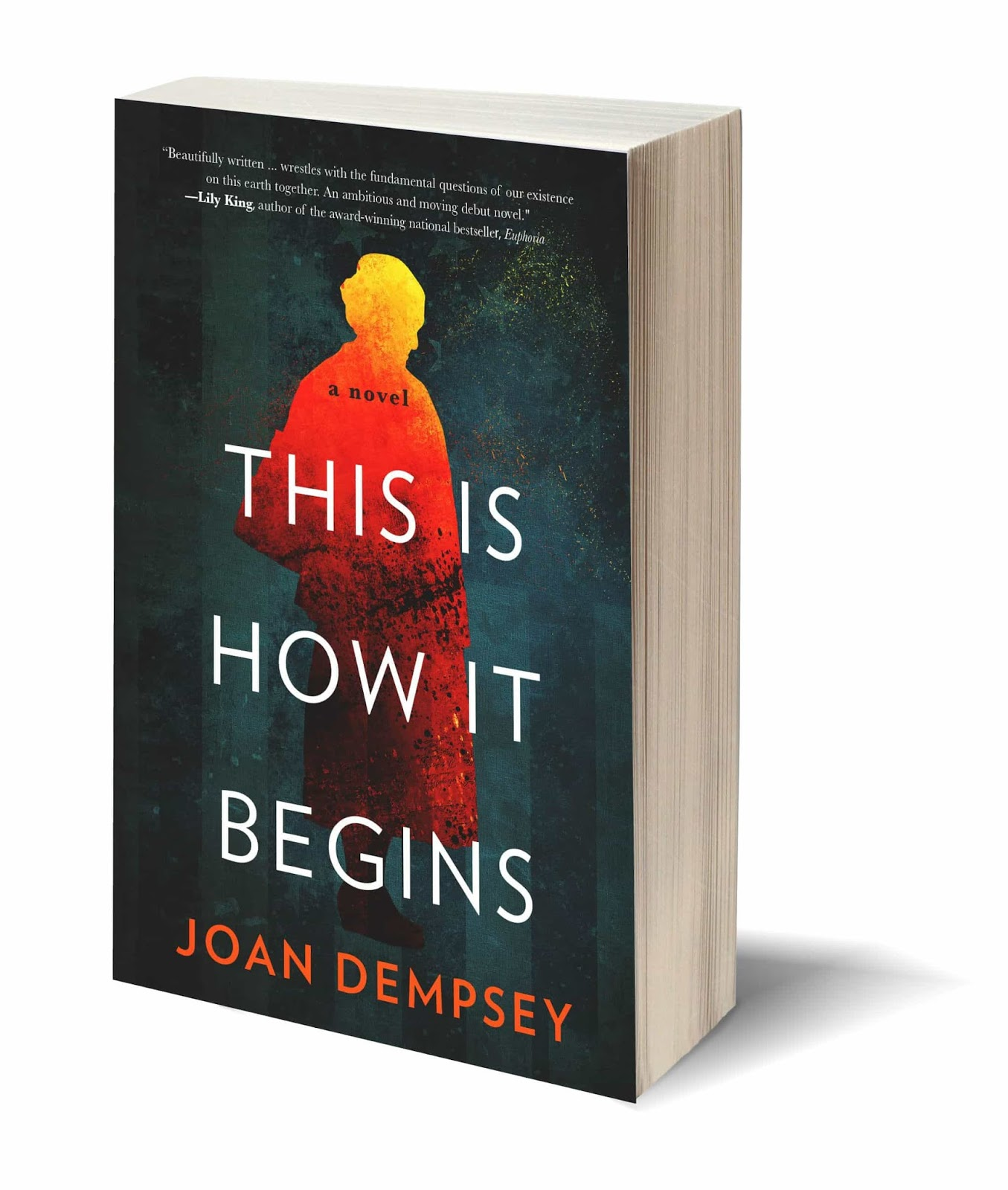 This Is How It Begins >> The Literate Quilter Talking With Joan Dempsey Author Of This Is