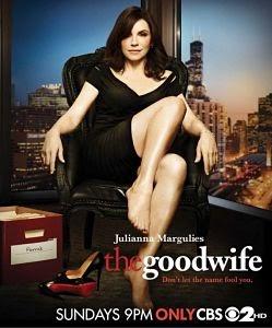 The Good Wife Temporada 2 online