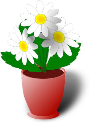 Most lovely Flower Pot images