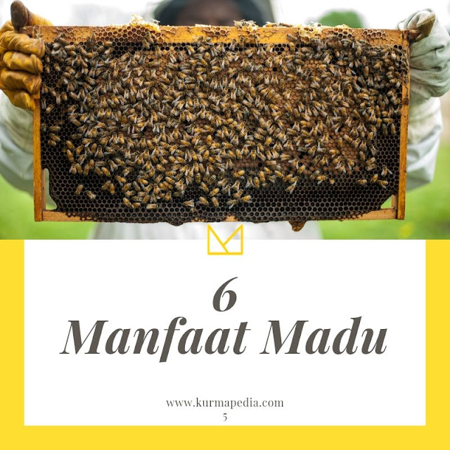 Manfaat | madu | raw honey |