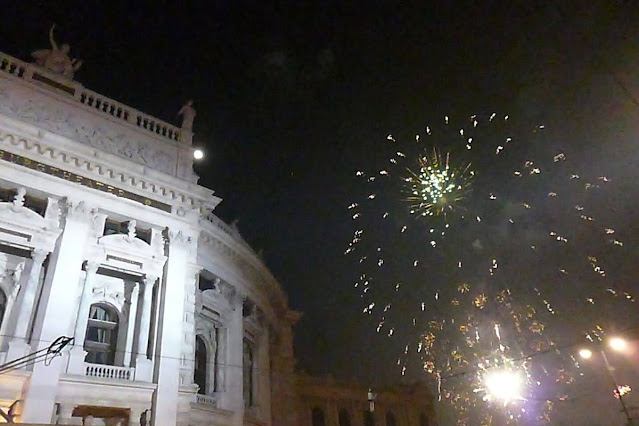 Vienna in December: Silvester fireworks