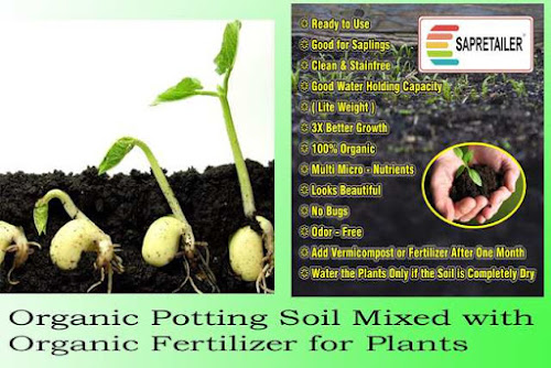 Organic Potting Soil Mixed with Organic Fertilizer for Plants