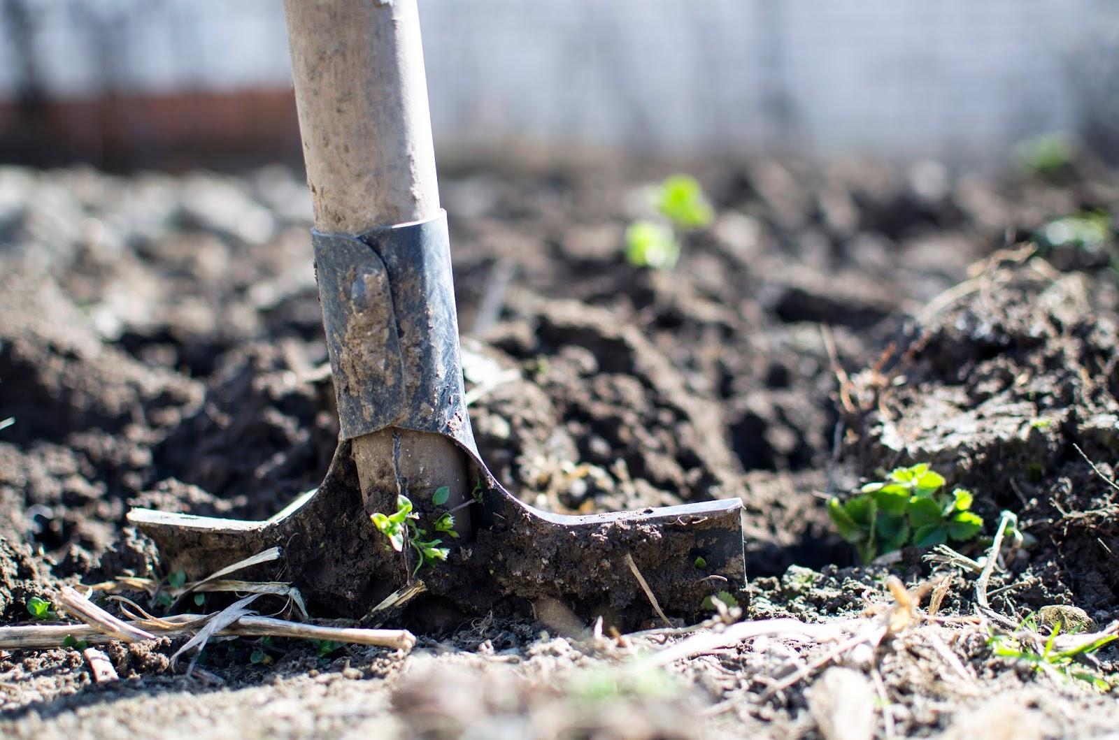 shovel garden