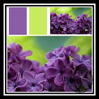 Inspiratiefoto paars en neongroen. Inspiration photo purple and neon-green.