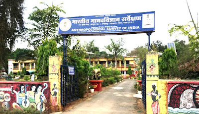 jagdalpur musuem_Echhattisgarh.in CG Tourism