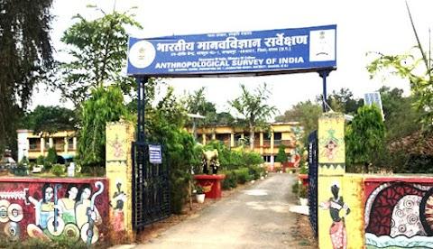 मानव विज्ञान संग्रहालय, जगदलपुर