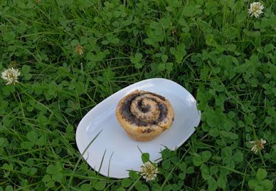 Mohn-Schnecken aus der Muffinform