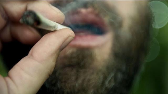 Hampir Setengah dari Semua Orangtua Amerika Telah Mencoba Marijuana