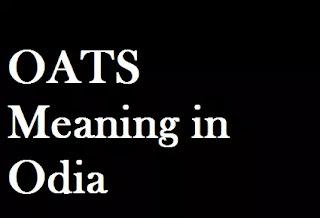 OATS Odia Meaning Oats Meaning in Oriya