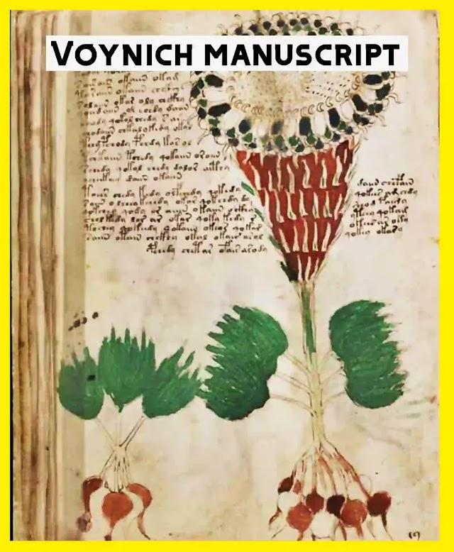 Voynich Manuscript Book: Unsolved Mysterious book | PDF