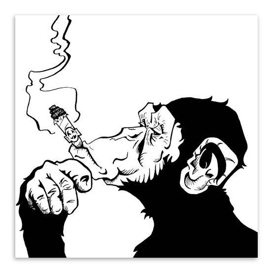 Kasus Imam Besar tak Lebih Penting dari Kenaikan Cukai Rokok