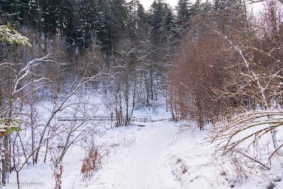 Pieniński Potok