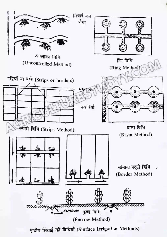 सिंचाई किसे कहते है, सिंचाई की परिभाषा, irrigation in hindi, sichai kise kehte hain, सिंचाई की आवश्यकता, सिंचाई के प्रकार, सिंचाई के लाभ एवं हानि,