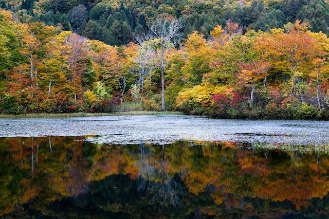 #photo #landscape #sigma #foveon #sdquattroh #japan #yamagata #nishikawa #山形県 #西川町 #山形帝國 #写真 #風景写真
