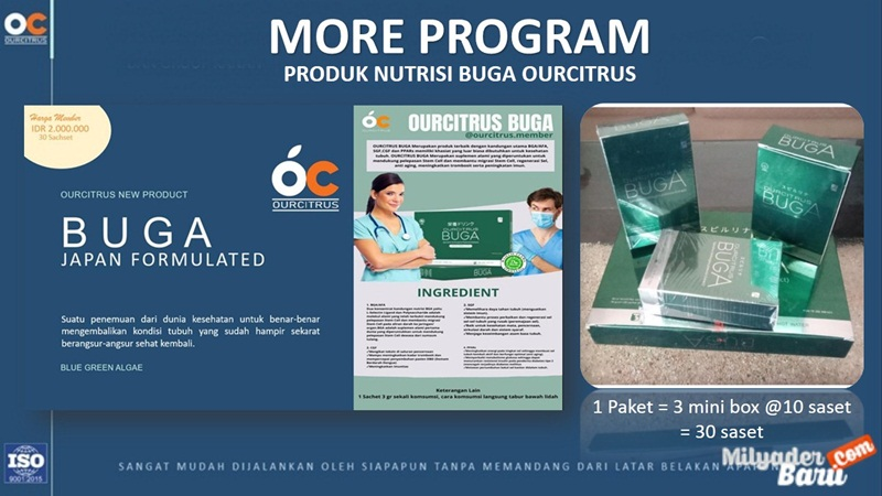 marketing plan ourcitrus MORE
