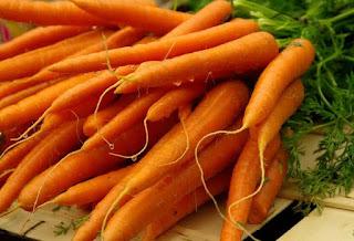 Aplikasi Kultur Jaringan pada Tanaman pada wortel