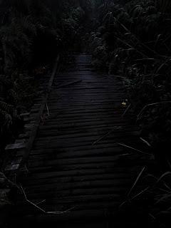 Jembatan kayu menuju kawah sileri