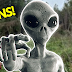 UK Man Finds UFO Crash Site in the Woods
