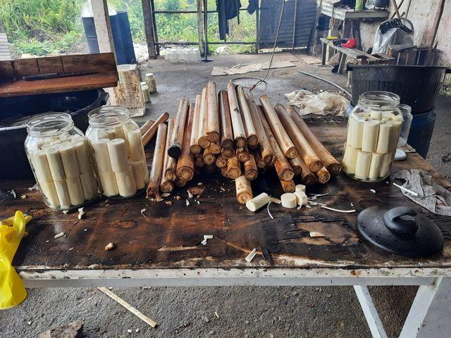 Policia Ambiental fecha fabrica clandestina de Palmito Juçara em Juquiá