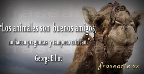 Frases de amistad, George Elliot