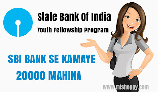 SBI Youth fellowship program SBI Bank se paise kamaye