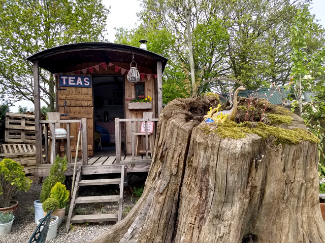 Shepherd hut tea