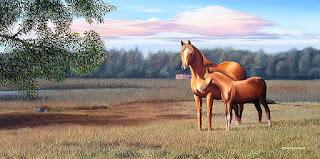corceles-paisajes-campo