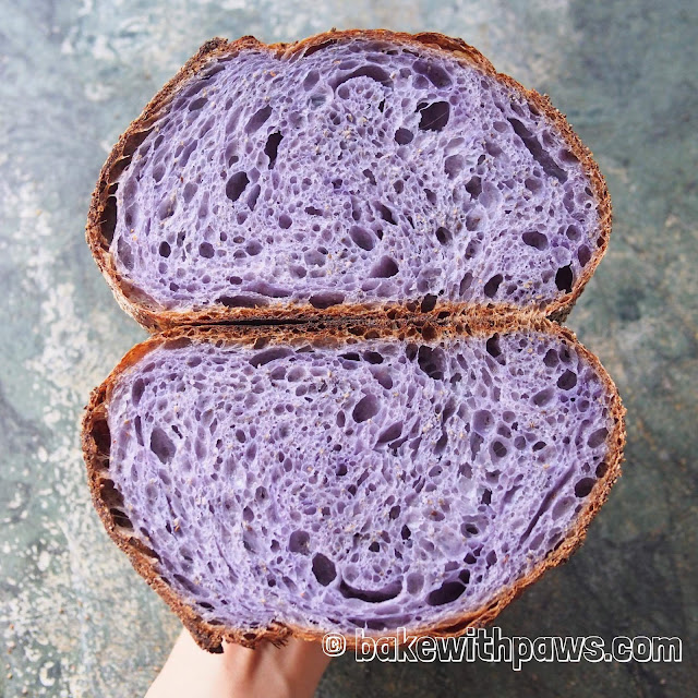 Butterfly Pea Flower Open Crumb Sourdough Bread
