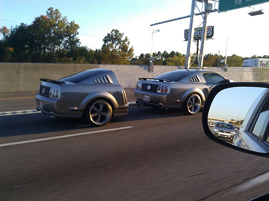 one and a half mustangs