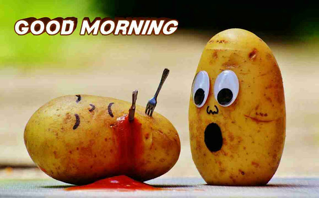 very funny good morning image