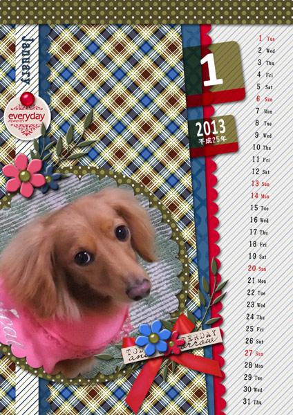 DSB  Calendar 2013-01