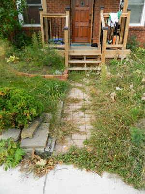 East York Toronto Front Garden Fall Cleanup Before by Paul Jung Gardening Services--a Toronto Gardening Services Company