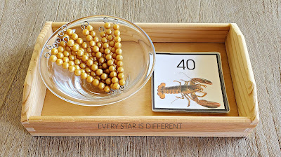 Crustaceans Skip Counting By 10s Activity