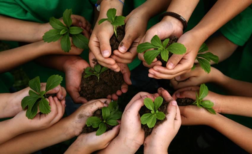 konservasi lingkungan