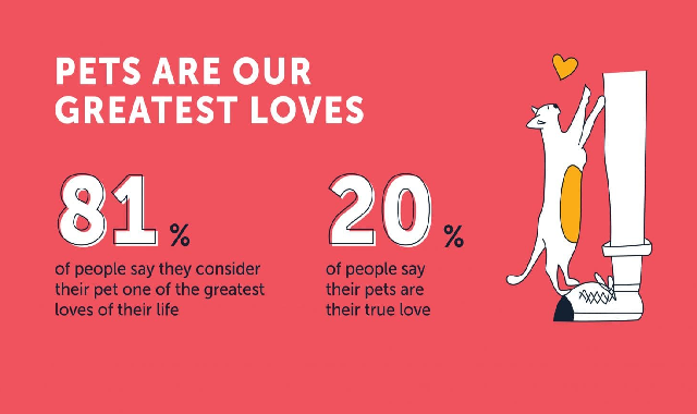 Pets Are Our Greatest Loves #infographic