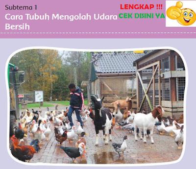 Kunci Jawaban kelas 5 tema 2 Subtema 1 Cara Tubuh Mengolah Udara Bersih www.simplenews.me