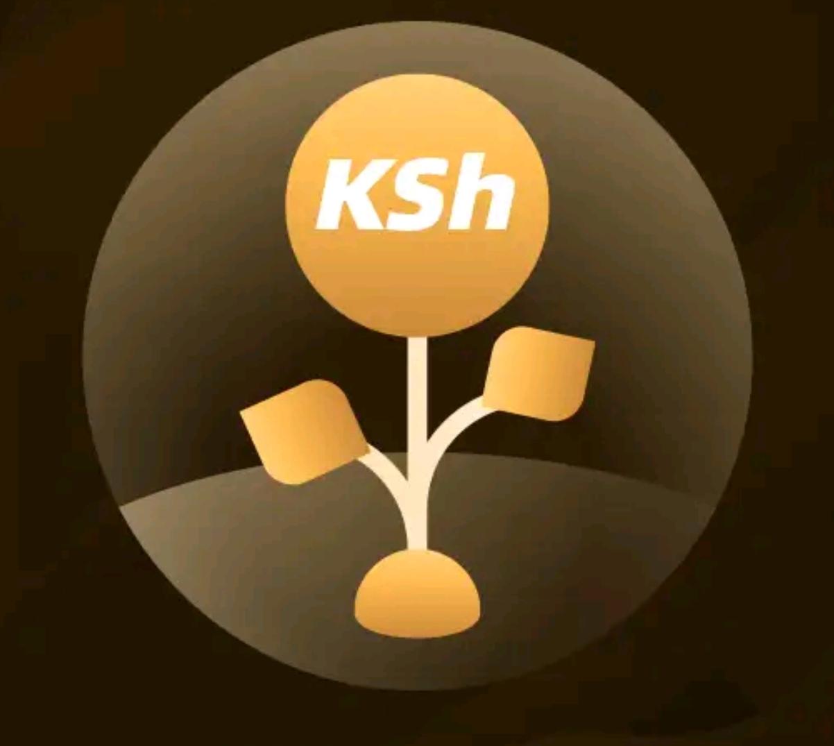 MoreKash loan app