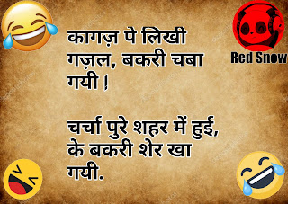 Best hindi joke shayri