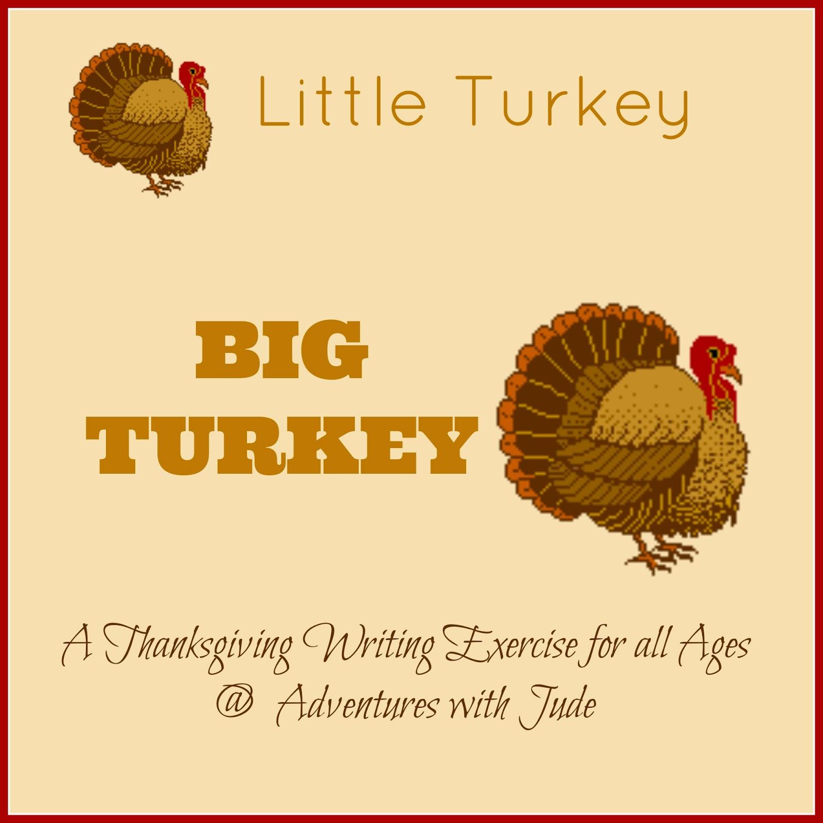 Adventures With Jude Little Turkey Big Turkey