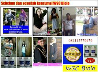 Agen-wsc-di-papua