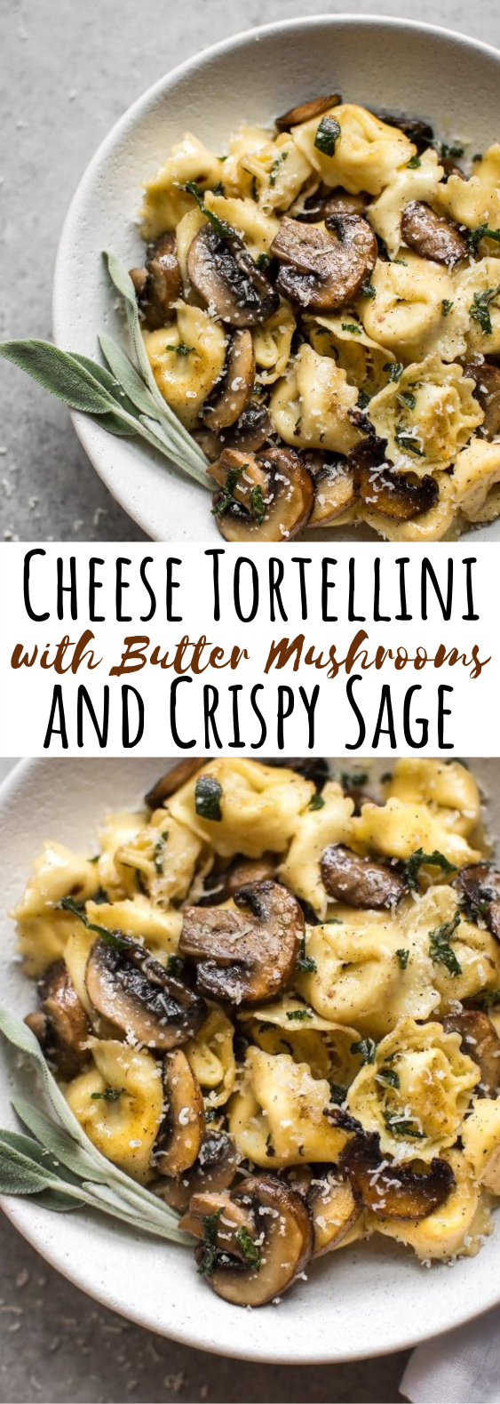 Cheese Tortellini with Butter, Mushrooms, and Crispy Sage #dinner #pasta