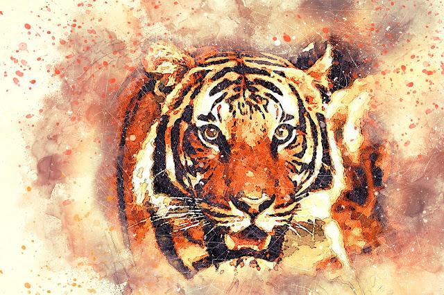 رسمة نمر جميلة