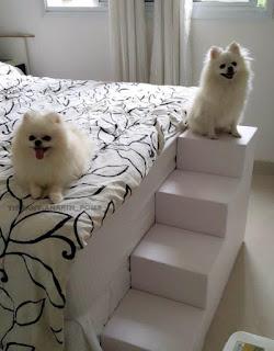 escadas para cães cama alta