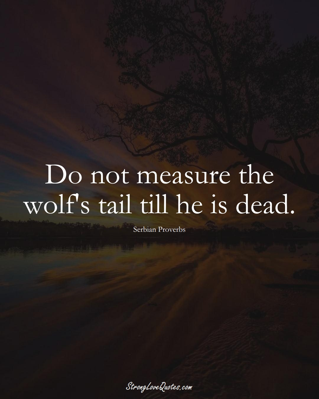 Do not measure the wolf's tail till he is dead. (Serbian Sayings);  #EuropeanSayings