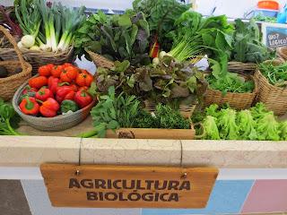 Resultado de imagem para agricultura biológica