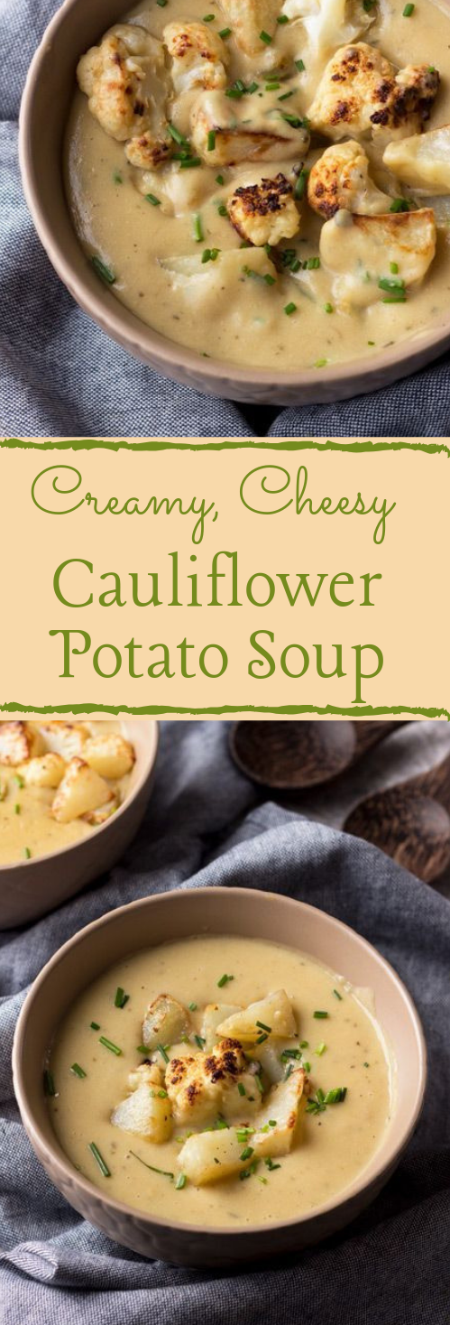 CHEESY VEGAN CAULIFLOWER POTATO SOUP #soup #dietketo #recipe #paleo #easy